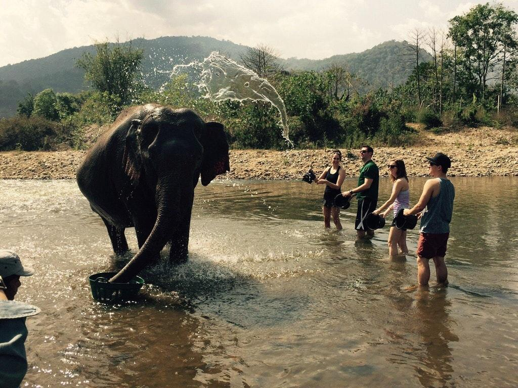 The water splashing in the air onto the elephant looks exactly like an elephant head.