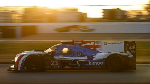 Alonso sunshine