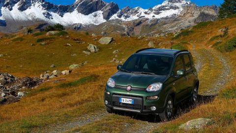Fiat Panda 4x4 (campo)