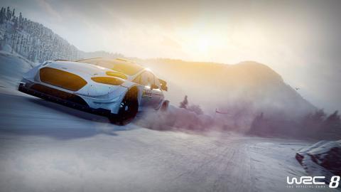 WRC 8 (nieve)