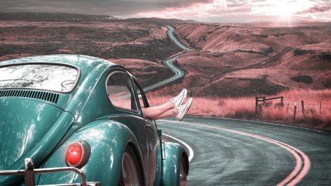 escarabajo ruta coche