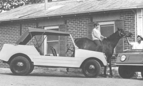 Volkswagen Country Buggy