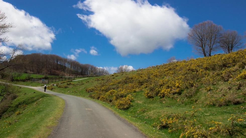Ruta Napoleón, Francia mejores carreteras rutas espectacular camino