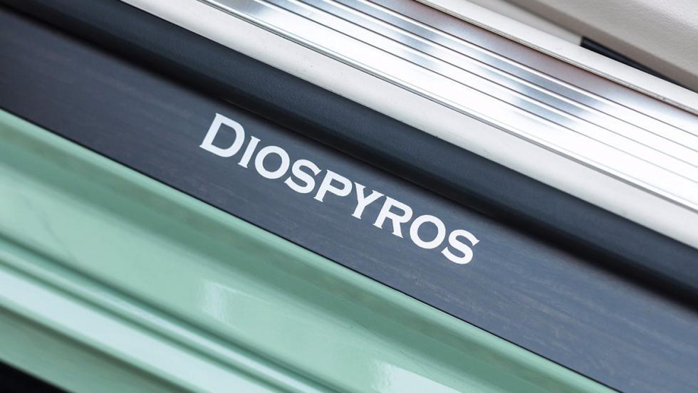 Carlsson Diospyros