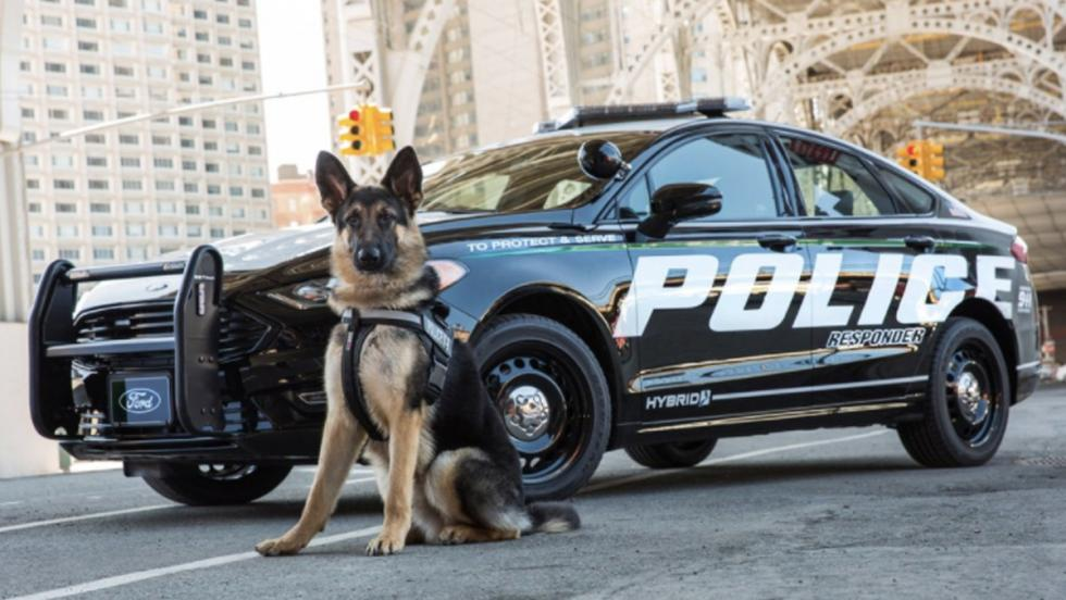 Coche de Policía de Ford (III)