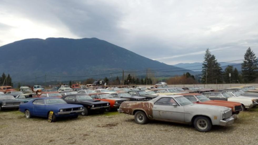 Finca con coches clásicos (IV)
