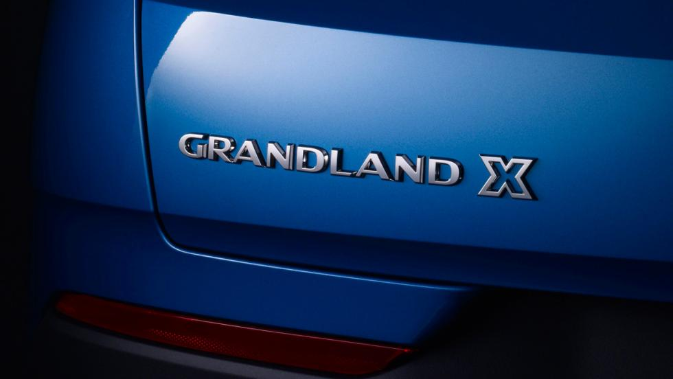 Opel Grandland X (VII)