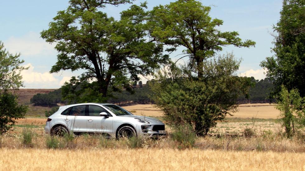 Porsche Macan S Diesel TG