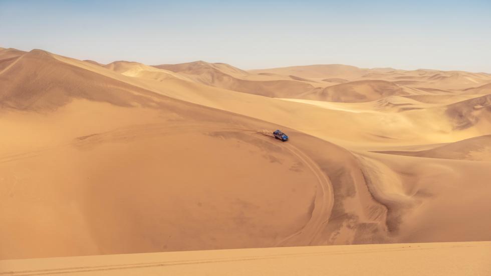 Prueba Swarm (dunas)