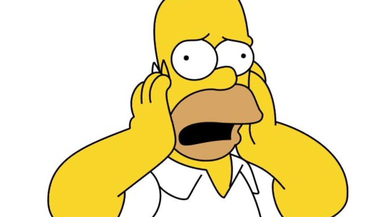 Homer desconcertado