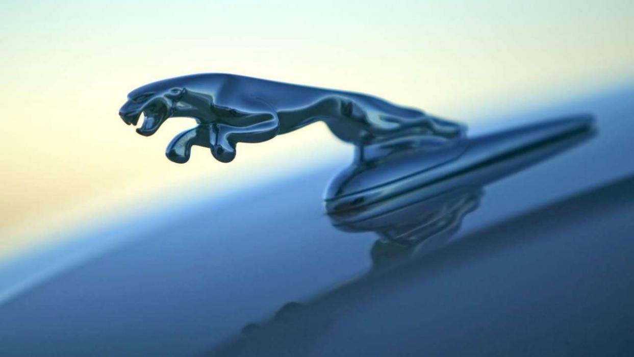 Jaguar emblema